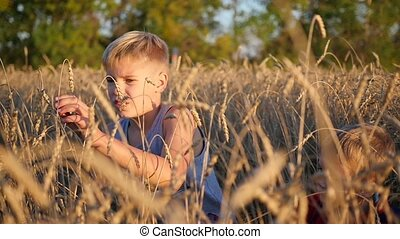 Children stand in a field of wheat. The boy holds the ear of wheat