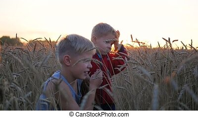 Children stand in a field of wheat. Two children laugh and smile. Walks in the fresh air during sunset