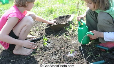 children watering young plant