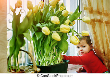 Children with tulips grown at home . The concept of mother's day .