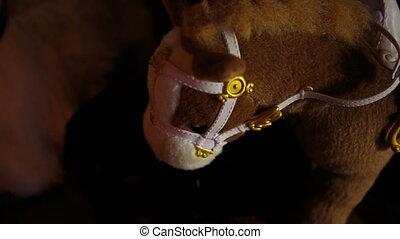 children's toy small pony closeup