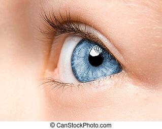 Child's eyes - Beautiful blue eye macro shot, macro