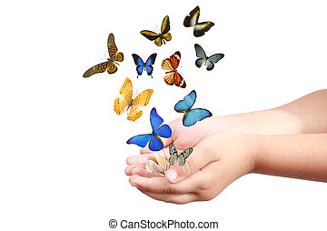 child's hand releasing butterflies - small hand and colorful...
