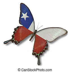 chile markierungsfahne, auf, papillon