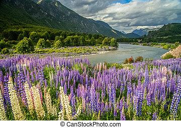 Chilean Patagonia landscape
