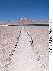chilenisch, oben, führen, 4000m, level., miscanti, (lake), meer, pfad, wüste, laguna