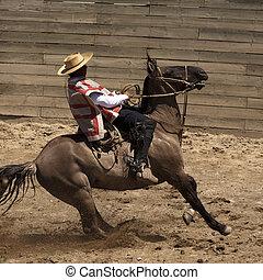 chileno, rodeo