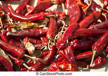 chili - kochen