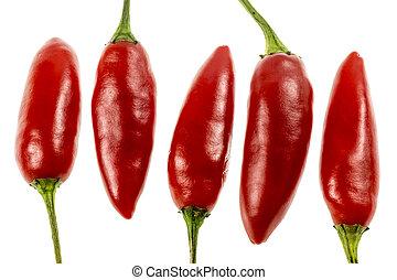 Chili Pepper Birds Eye - The Birds Eye, or Thai Chili, is a...