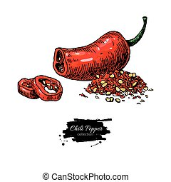 Chili Pepper hand drawn vector illustration. Vegetable artistic style object. Isolated hot spicy mexican