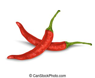 Vegetable organic food red chili pepper isolated on white background vector illustration