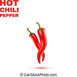 Chili Peppers isolated on white Background. Vector