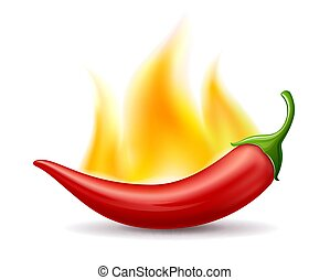 Chili peppers red fire, design isolated on white background vector