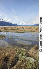 Chilkat Estuary in Fall