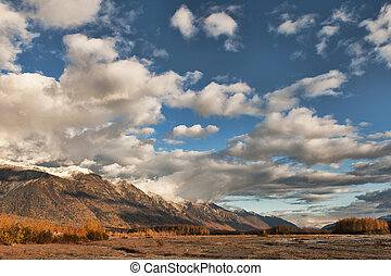 Chilkat mountains in fall