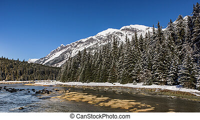 Chilkoot river in winter
