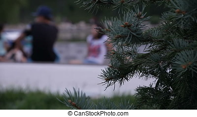 Chilling Out Young People Group at Sunset on Lake Shore -...