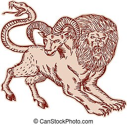 Etching engraving handmade style Illustration of a Chimera, Greek mythical creature with head of a lion and goat and tail that ended in a snake's head viewed from side on isolated background.