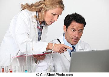 chimistes, regarder, ordinateur portable
