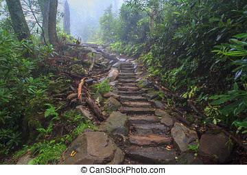 Chimney Tops Steps - Worn rocky steps leading up to the...