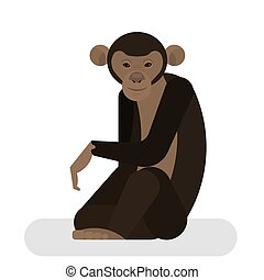 Chimpanzee from the jungle. African monkey character