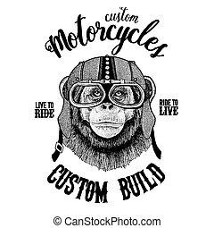 Chimpanzee Monkey Biker, motorcycle animal. Hand drawn image...