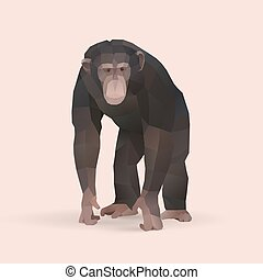 chimpanzee, polygonal geometric animal illustration, vector