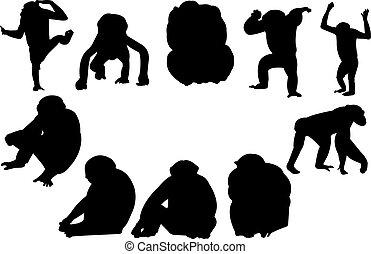 Chimpanzee Silhouette vector illustration