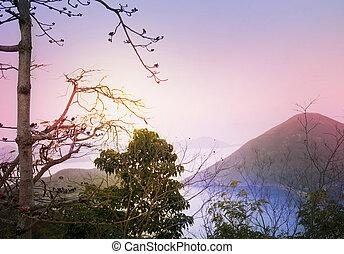china., asiatique, paysage