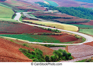 Rural field landscape in Yunnan province of China