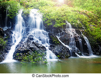 The small waterfall in the jungle