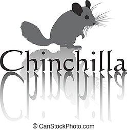 Chinchilla vector art