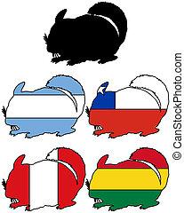 Chinchilla flags