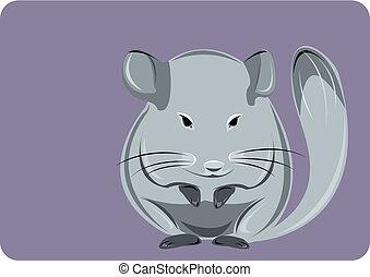 Chinchilla - Lovely grey chinchilla on a violet background