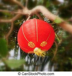chinees, gestyleerd, lantaarntje, hangend, in, tropische , milieu
