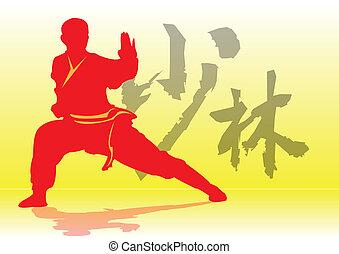 chinees, kung-fu.