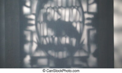 Chinese abstract shadow background