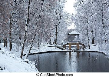 Chinese bridge in the park. Ukraine
