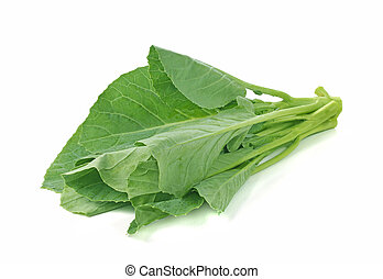 chinese broccoli on white background