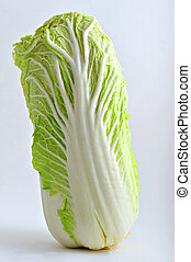 Chinese cabbage on simple light grey background