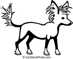 Chinese Crested Dog - vector illustration of a cute chinese...