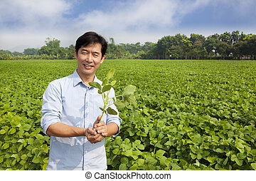 chinese farmer holding sapling and standing on his farm