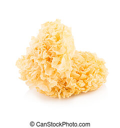 Chinese food tremella fuciformis white fungus isolated