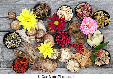 Chinese Herbs used in Traditional Chinese Herbal Medicine
