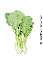 chinese lettuce on white background