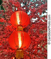 Chinese New Year lantern or Tung Lung