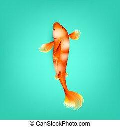 Chinese Orange Koi Fish With White Spots Vector