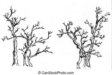 chinese paint tree ,the three trees