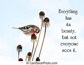 Chinese proverb about beauty in nature, with a pretty male...