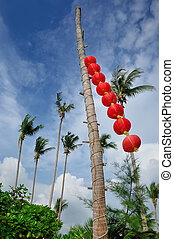 Chinese styled lanterns. Chang Island, Thailand